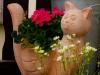 Blumenbepflanzung